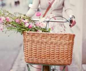 flowers, bike, and basket image