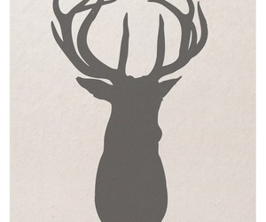 antlers, deer, and bambie image