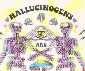 friends, drugs, and hallucinogens image