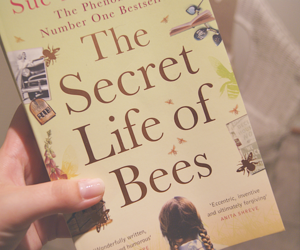 book, read, and the secret life of bees image