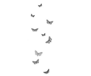 background, black and white, and butterfly image