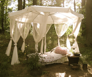 bed, nature, and forest image