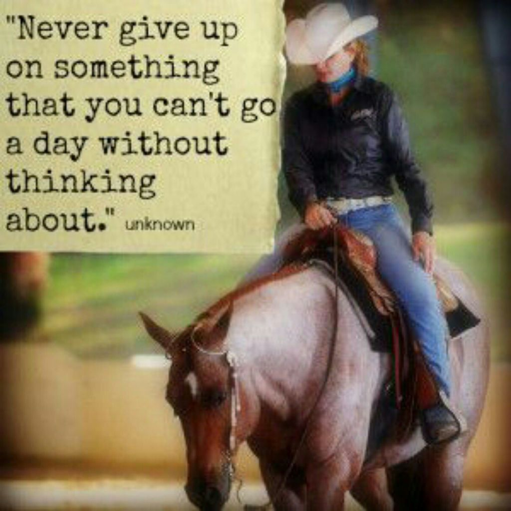 Horse Quotes Uploaded By Miriam On We Heart It