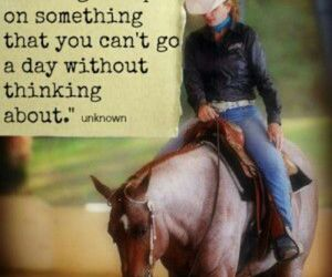 horses quotes image