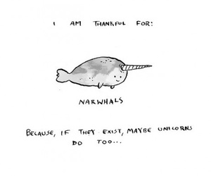 unicorn, narwhal, and drawing image