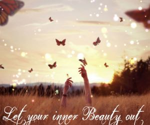 beauty, butterflies, and butterfly image