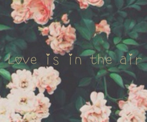 flowers, love, and air image