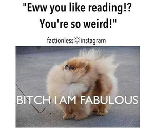 fabulous, lol, and reading image