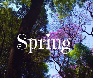 amazing, spring, and love image