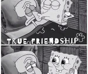 friendship, cute, and spongebob image