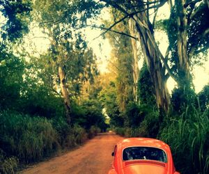 car, fusca, and vintage image