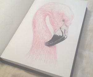 bird, pink, and art image