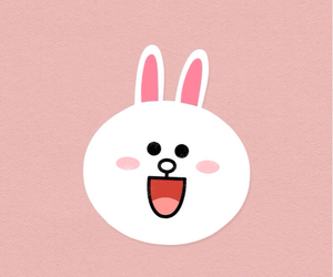 rabbit, wallpaper, and cony image