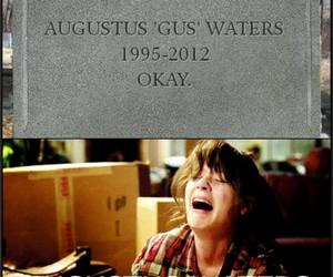 rip, gus, and the fault in our stars image
