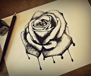rose, drawing, and art image