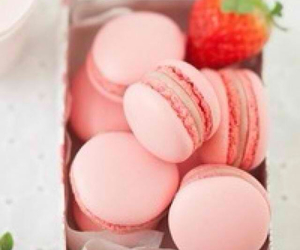 pink, food, and macaroons image