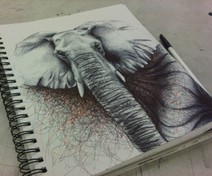 drawing, elephant, and art image