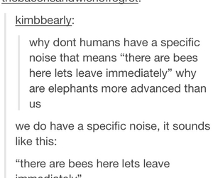 bees, human, and elephants image