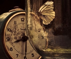 butterfly, clock, and Dream image