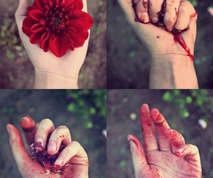flowers, red, and blood image