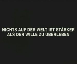 deutsch sprüche image