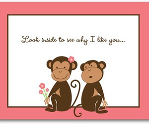 monkey, ivos, and love image