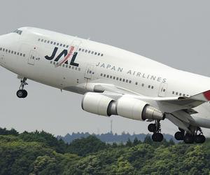 aeroplane, aircraft, and aviation image