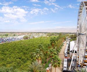coachella and ferris wheel image
