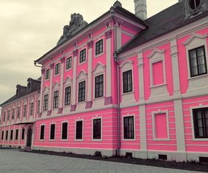 pink and vukovar image