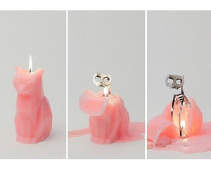 candle and cat image
