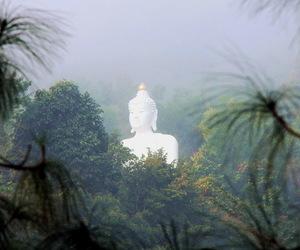 Buddha, buddhism, and nature image