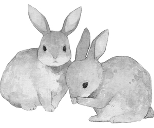 bunny, monochrome, and cute image