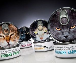 cat, design, and packaging image