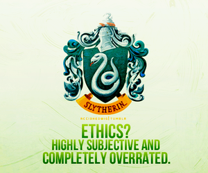 slytherin and house pride image