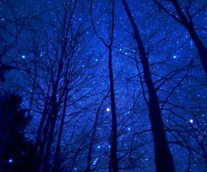 blue, starry night, and tree image