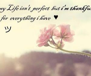 flowers, life, and quote image