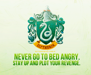 slytherin, harry potter, and house pride image