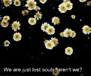 quote, flowers, and soul image