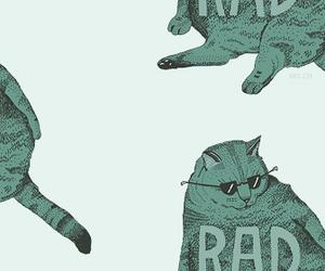 cat and rad image