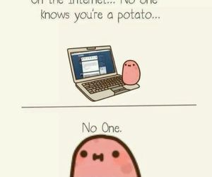 potato, internet, and funny image