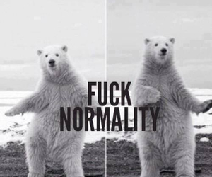 quotes and normality image