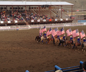rodeo, usa, and stars & stripes image