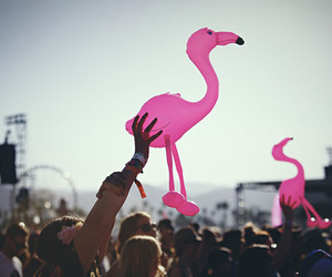 festival, pink, and coachella image