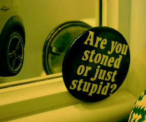 stoned, stupid, and text image