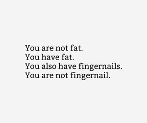 quote, fat, and funny image