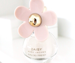 daisy, flower, and perfume image