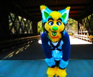 colorful, furry, and partial image