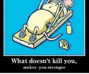 strong, mouse, and funny image