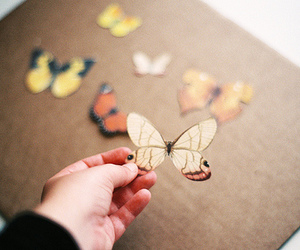 butterfly, vintage, and hand image