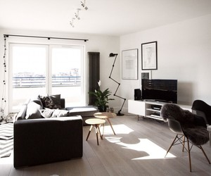 black and white and living room image